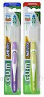 Gum Activital, Médium à CHAMPAGNOLE