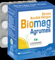 Lehning Biomag Comprimés à Croquer Agrumes B/90 à CHAMPAGNOLE