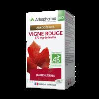 Arkogélules Vigne Rouge Bio Gélules Fl/45 à CHAMPAGNOLE