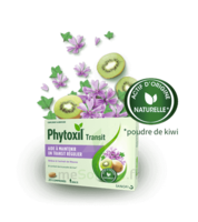 Phytoxil Transit Comprimés B/20 à CHAMPAGNOLE