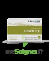 Granions De Bismuth 2 Mg/2 Ml S Buv 10amp/2ml à CHAMPAGNOLE