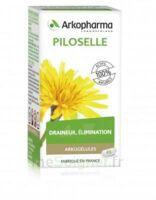 Arkogélules Piloselle Gélules Fl/45 à CHAMPAGNOLE
