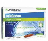 Arkocean Magnesium Marin Solution buvable caramel 20 Ampoules/10ml à CHAMPAGNOLE