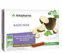 Arkofluide Bio Ultraextract Radis Noir Solution Buvable 20 Ampoules/10ml à CHAMPAGNOLE