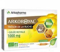 Arkoroyal Gelée Royale Bio 1000 Mg Solution Buvable 20 Ampoules/10ml à CHAMPAGNOLE