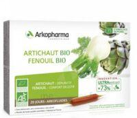 Arkofluide Bio Ultraextract Artichaut Fenouil Solution Buvable 20 Ampoules/10ml à CHAMPAGNOLE
