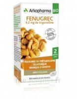 Arkogélules Fenugrec Bio Gélules Fl/40 à CHAMPAGNOLE