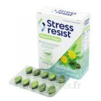 Stress Resist Comprimés Stress & Fatigue B/30 à CHAMPAGNOLE
