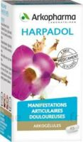 ARKOGELULES HARPAGOPHYTON Gélules Fl/150 à CHAMPAGNOLE
