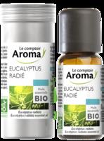 Huile Essentielle Bio Eucalyptus Radié à CHAMPAGNOLE