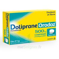 Dolipraneorodoz 500 Mg, Comprimé Orodispersible à CHAMPAGNOLE