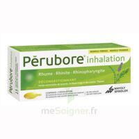 PERUBORE Caps inhalation par vapeur inhalation Plq/15 à CHAMPAGNOLE