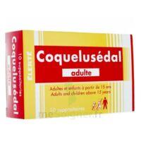 COQUELUSEDAL ADULTES, suppositoire à CHAMPAGNOLE