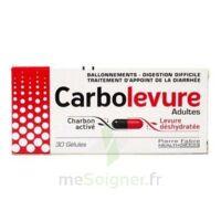 CARBOLEVURE Gélules adulte Plq/30 à CHAMPAGNOLE