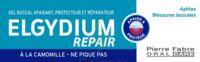 Elgydium Repair Pansoral Repair 15ml à CHAMPAGNOLE