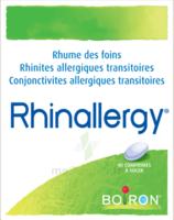 Boiron Rhinallergy Comprimés B/40 à CHAMPAGNOLE