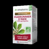 Arkogélules Marronnier D'inde Bio Gélules Fl/45 à CHAMPAGNOLE